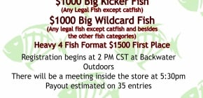 BigFishChallenge2-17